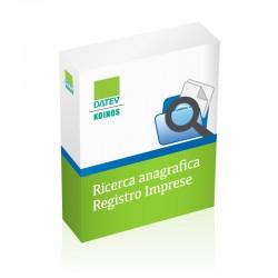 Ricerca anagrafica Registro Imprese